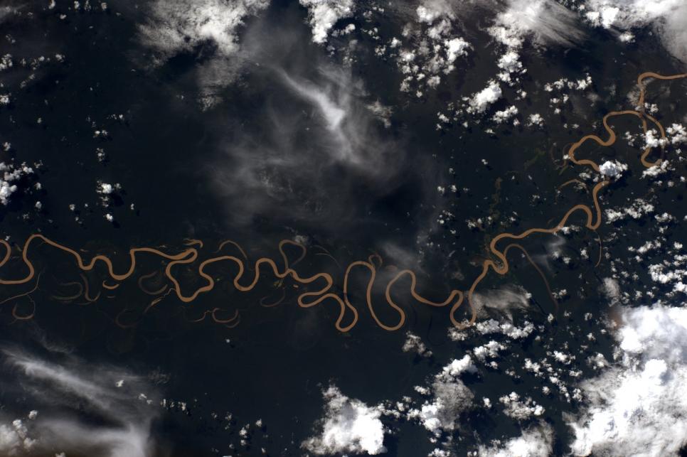 Дождевые леса Амазонки