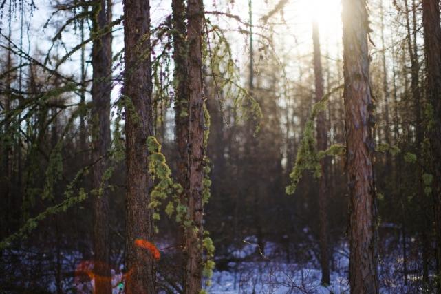 flickr.com / alex-saurel