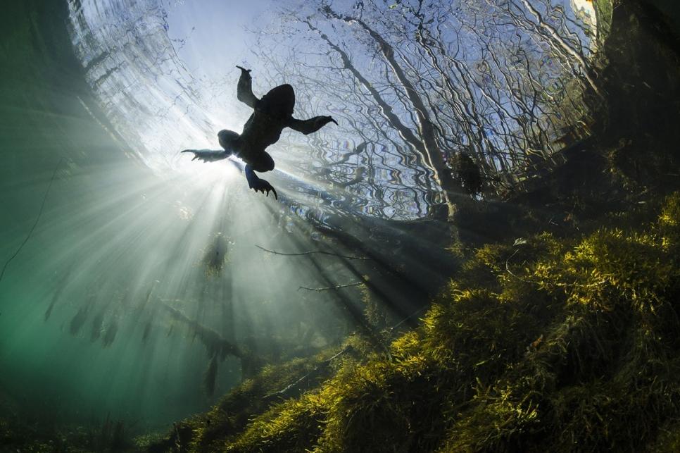 Фото: Yannick Gouguenheim
