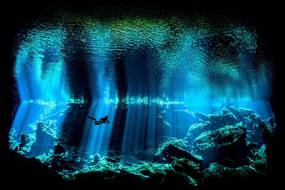 «Из глубины». Фото: Nick Blake