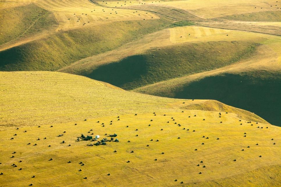 Сбор урожая, Астраханская область