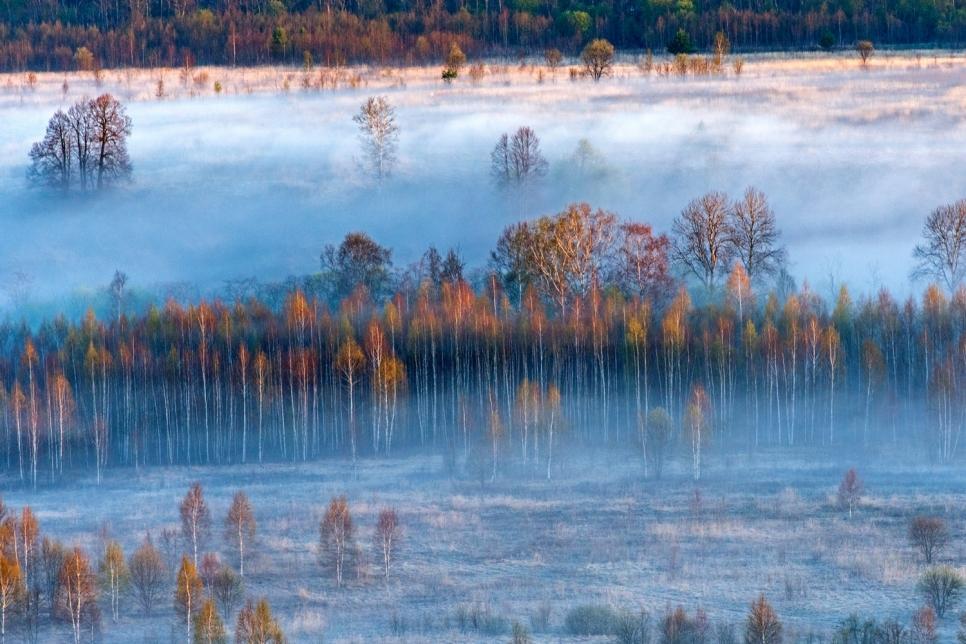 Туман, Тверская область