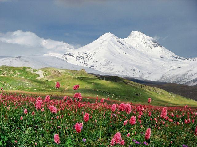 Западный Кавказ Всемирное наследие ЮНЕСКО Арриво labels